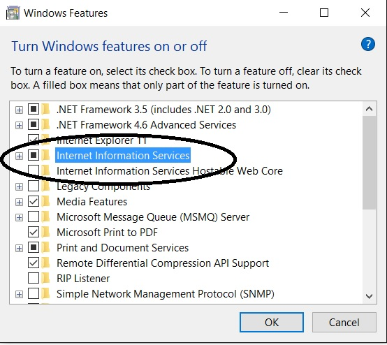 on windows iis features