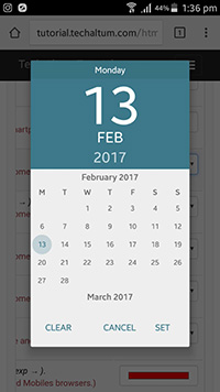 input type date android
